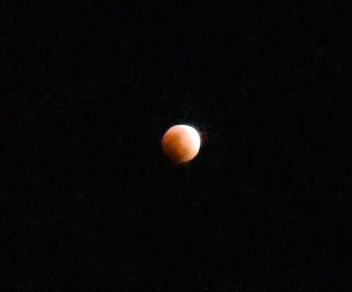 月食0.jpg